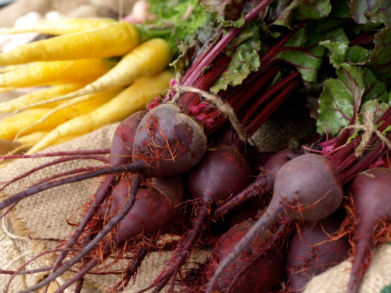 Beets and Carrots by Garden Windows Photography