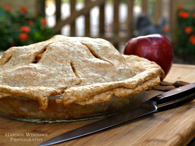 Apple Pie #1 by Garden Windows Photography