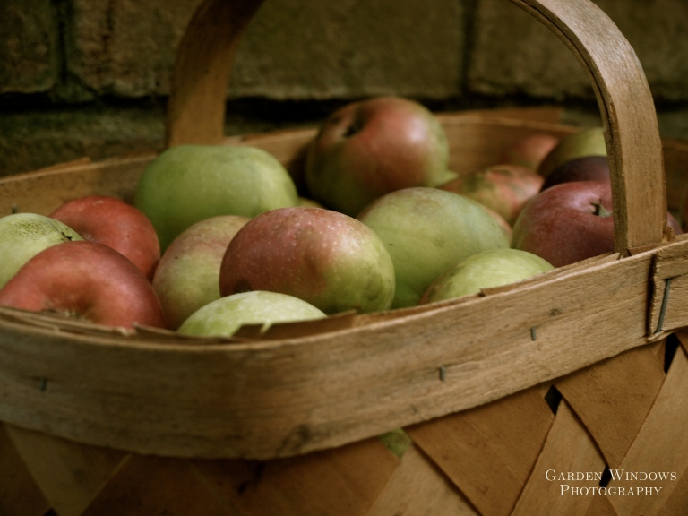 Harvest #3 by Garden Windows Photography
