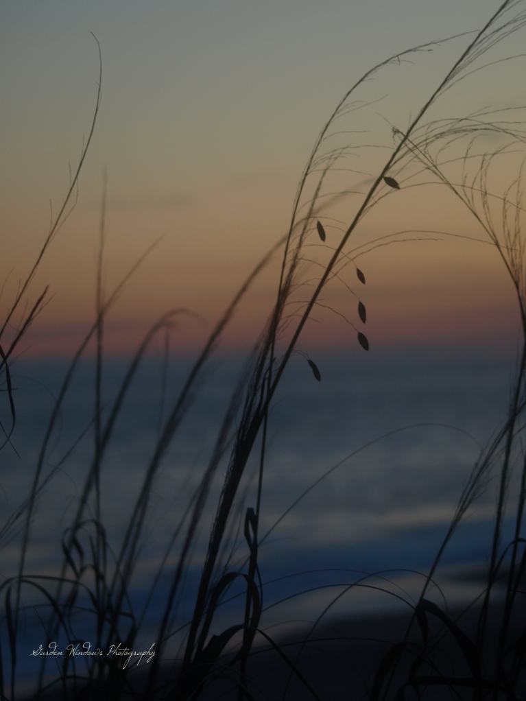 Ocean Breath #3 by Garden Windows Photography
