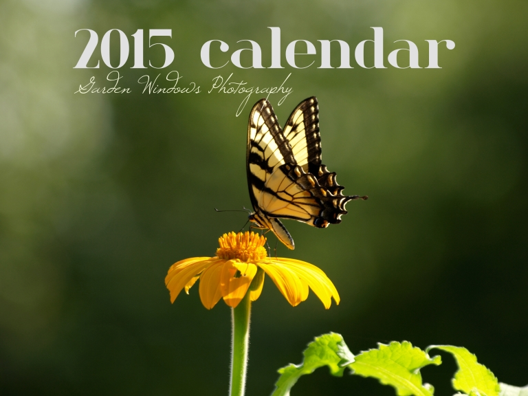 Butterfly Calendar 2015