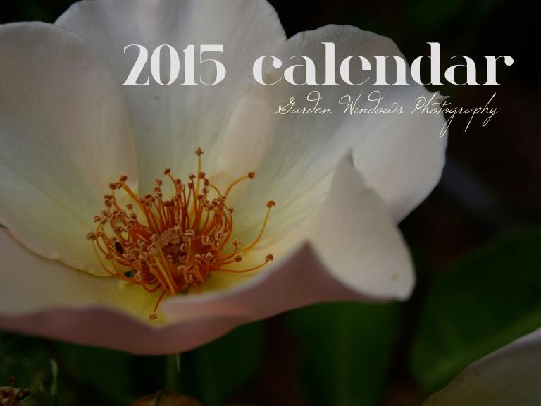 A Bit of Everything Calendar 2015