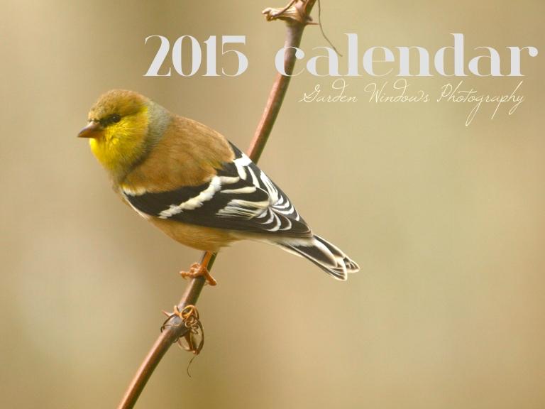 Bird Calendar 2015