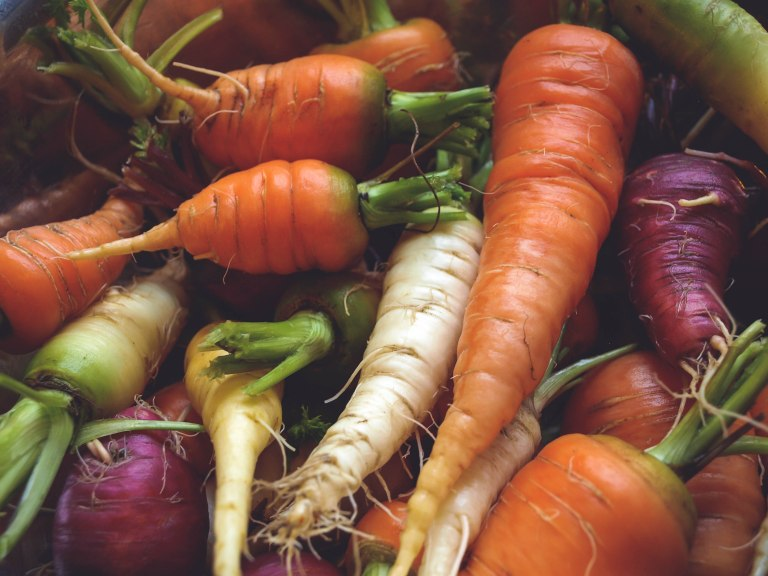 Carrots by Garden Windows Photography