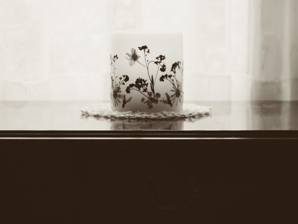 GardenWindows Photography